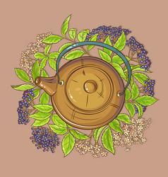 Elderberry tea in teapot vector