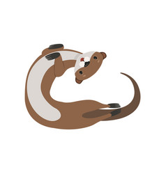 Funny brown otter animal character vector