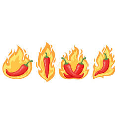 hot chilli peppers cartoon spicy red chilli vector image