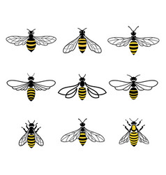 Set bee logos and icons vector