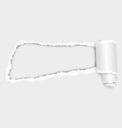 snatched hole in sheet of white paper vector image