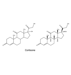 Structural chemical formulas of cortisone vector image