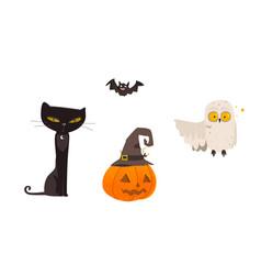 halloween objects - cat owl bat pumpkin lantern vector image vector image
