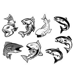Cartoon salmons fish set vector image vector image
