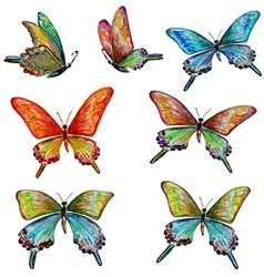 collection of cute butterflies watercolor painting vector image vector image
