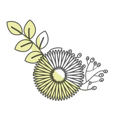 beautiful sunflower decoration icon vector image