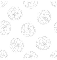 begonia flower picotee outline on seamless vector image