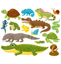 Cartoon amphibians and reptiles serpent reptile vector