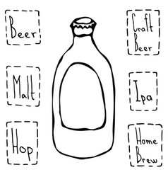 classic beer bottle hand drawn vector image