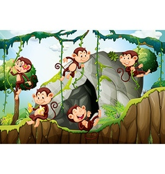 Five monkeys living in the forest vector