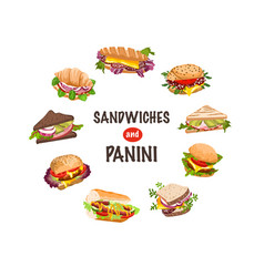 fresh sandwiches and panini vector image