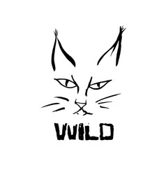 lynx grunge print of wild cat vector image