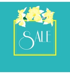 Narcissus sale banner vector