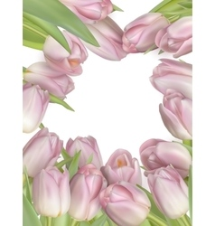 Tulip flowers border EPS 10 vector image