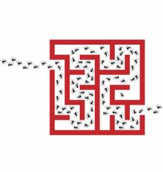 Ant infestation vector