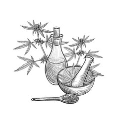 drawing cbd oil vector image