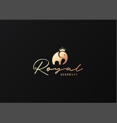 elephant logo king concept on black background vector image