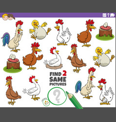 Find two same chicken characters educational task vector