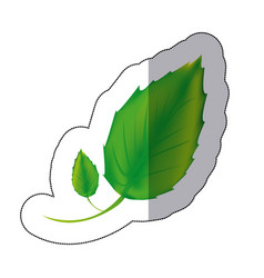 sticker color leaves icon vector image vector image