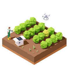agricultural drone inspecting crop field vector image
