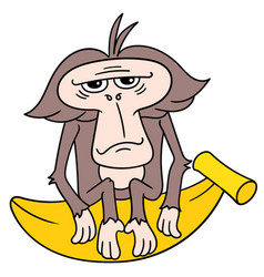 An innocent faced old monkey sitting gloomily on vector