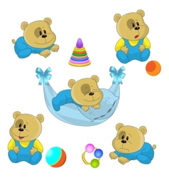 cute little bear cubs vector image