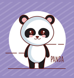 Cute panda bear tender character vector