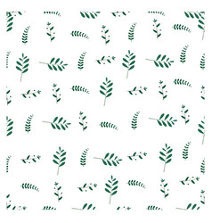 flora seamless pattern graphic design isolated on vector image