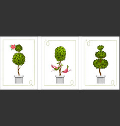 Set of topiary cards vector