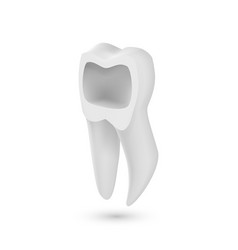 Tooth icon realistic teeth isolated on white vector