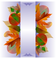 lace background with autumn leaves vector image