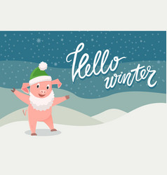 card hello winter with symbol of 2019 pig vector image