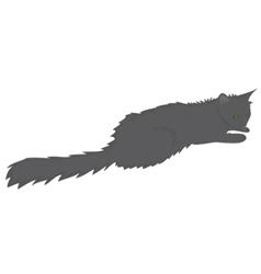 Grey cat art style vector