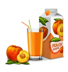 Peach juice set vector image