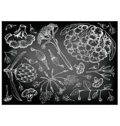 Podded vegetables on chalkboard vector
