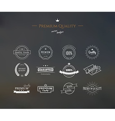 Premium quality labels set vector image