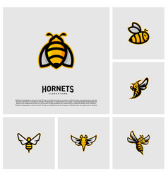 set of bee logo design hornets logo template vector image