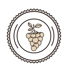 silhouette monochrome of dish with grapes vector image