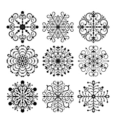 Decorative Snowflakes set vector image
