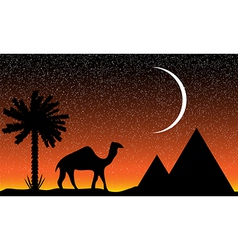 night in egypt vector image