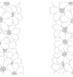 cosmos flower outline border vector image