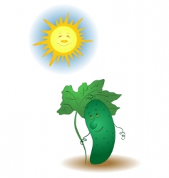 Cucumber and the sun vector