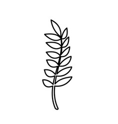 line healthy wheat organ plant nutricious vector image vector image