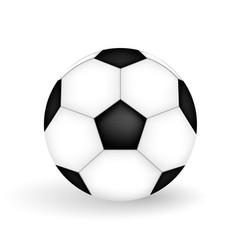 A naturalistic 3d model of a soccer ball vector