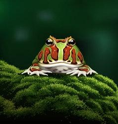 Argentine horned frog vector