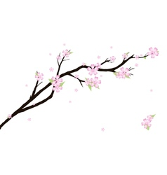 Background with stylized cherry blossom vector image