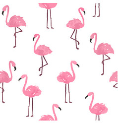 Cute flamingo background vector