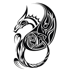 dragon tatoo vector image