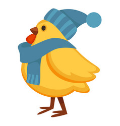 Funny chicken in warm knitted hat and scarf vector