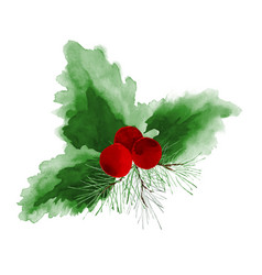 Holly and pine leaves watercolor hand-painted on vector